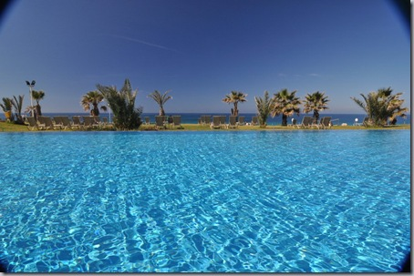 бассейн и пальмы